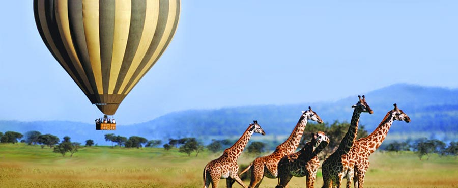Ballon Safaris